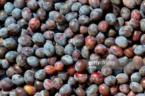 Stock of blue plums fruit