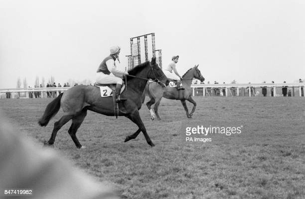 Stock shot of the racehorse Bachelor's Hall with jockey Bob Champion in the saddle Owned jointly by Mr and Mrs P W Harris the gelding is trained at...