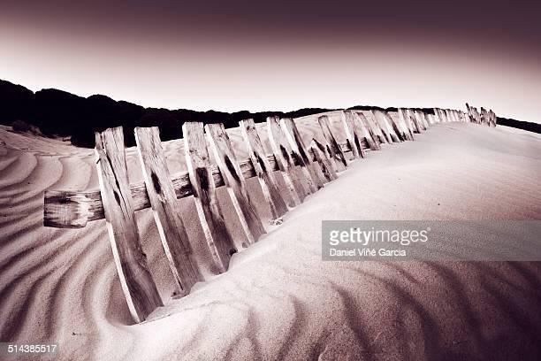 Stockade in dunes