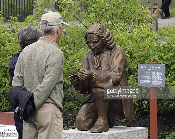 Visitors look at a statue of botanist Carl Linnaeus along the Linnaeus botanic track 18 May 2007 arranged for the 300 anniversary of Linnaeus' birth,...