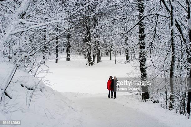 stockholms hagaparken during winter - merten snijders stockfoto's en -beelden