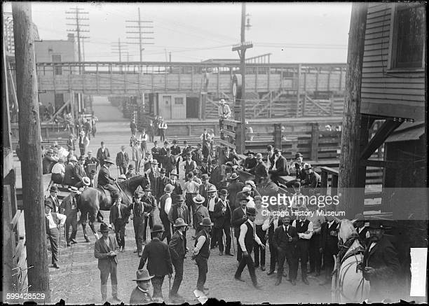 Stockmen in the stockyards during the stockyards strike Chicago Illinois 1904 From the Chicago Daily News negatives collection