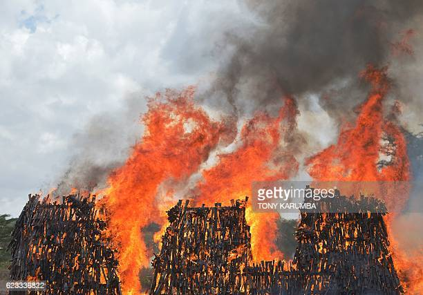 TOPSHOT A stockpile of illegal arms confiscated from a variety of criminals goes up in smoke in Ngong in Kajiado county on November 15 2016 as a...