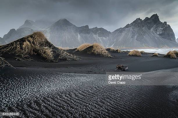 stoksnes beach near hofn in iceland - iceland stock pictures, royalty-free photos & images