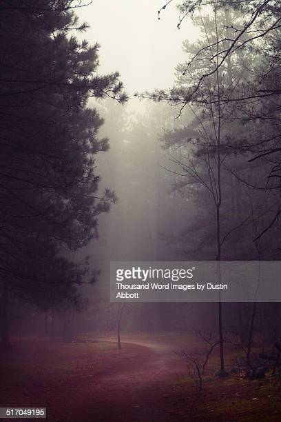 stolen moments of light - dustin abbott stock pictures, royalty-free photos & images