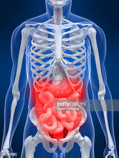 stomach ache - bowel cancer stock pictures, royalty-free photos & images