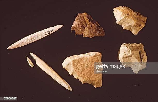 Stone and bone tools from Lake Mungo New South Wales Australia