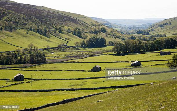 Stone barns and fields in Littondale Yorkshire Dales national park England UK