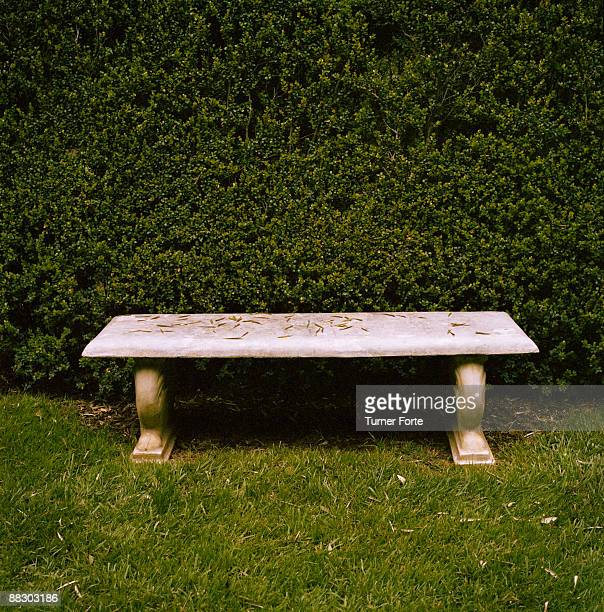 Stone bench next to hedge