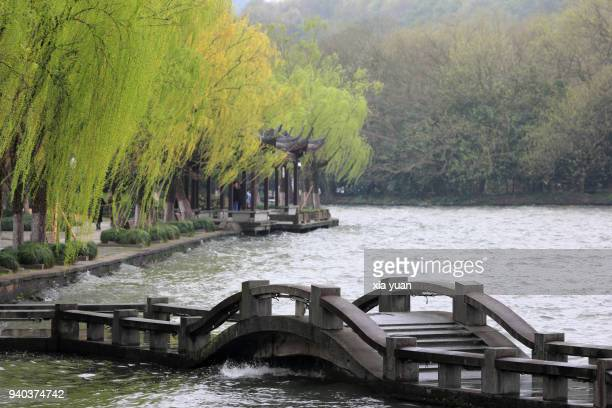 a stone bridge against budding willow leaf,hangzhou,china - west lake hangzhou stock pictures, royalty-free photos & images