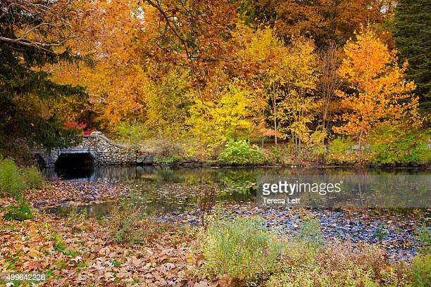 stone bridge with creek - kalamazoo stock pictures, royalty-free photos & images