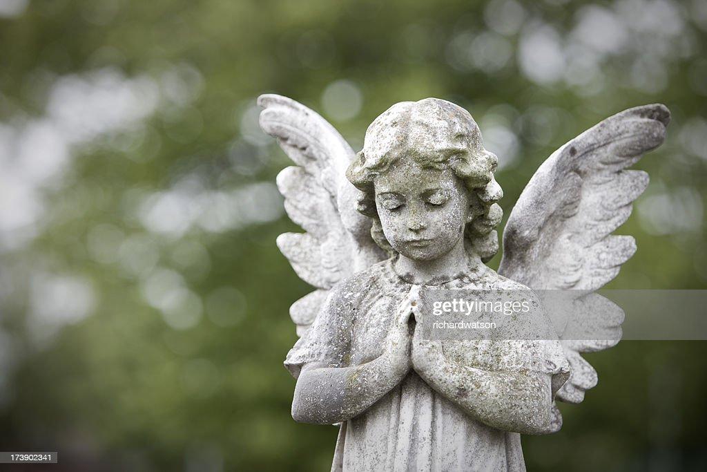 Stone cherub praying : Stock Photo