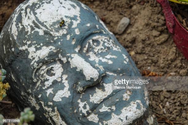 Stone face decor in garden