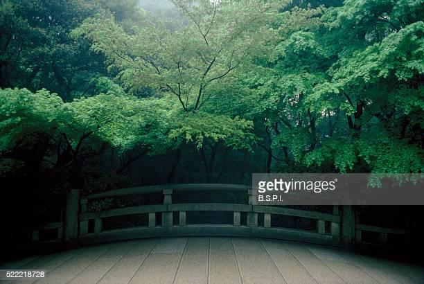 Stone Footbridge Under Japanese Maples