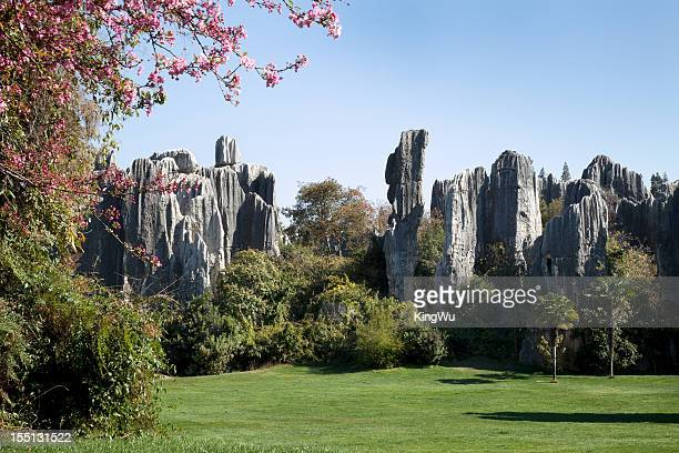 Stone Forest, Kunming, China
