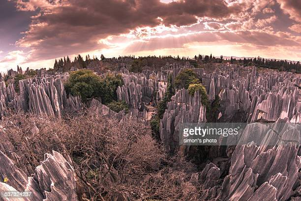 stone forest - south china stock pictures, royalty-free photos & images