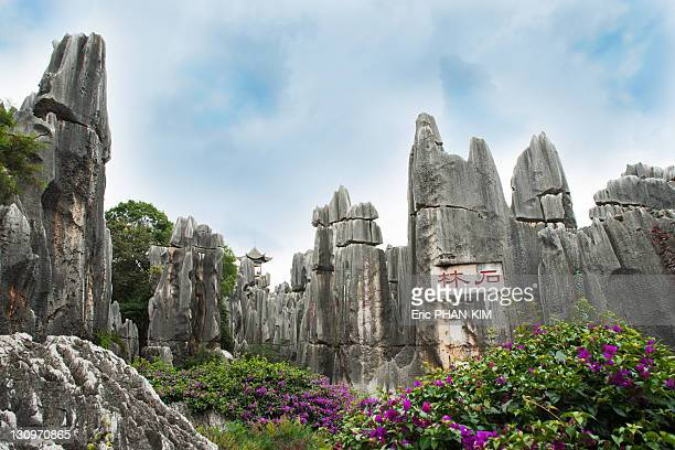 stone forest, shilin, china - kunming stock photos and pictures
