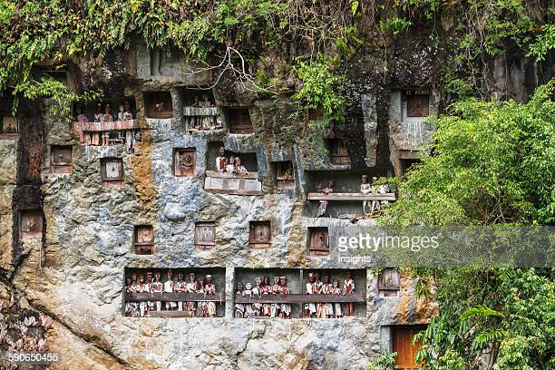 Stone graves carved out of a rocky cliff with woodcarved effigies of the deceased called Tau tau Lemo Toraja Land South Sulawesi Indonesia