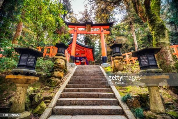 lampes en pierre et portes torii au sanctuaire fushimi inari à kyoto, japon - saint eloi photos et images de collection