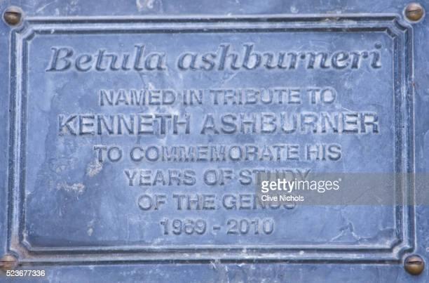 stone lane garden - memorial plaque stock pictures, royalty-free photos & images