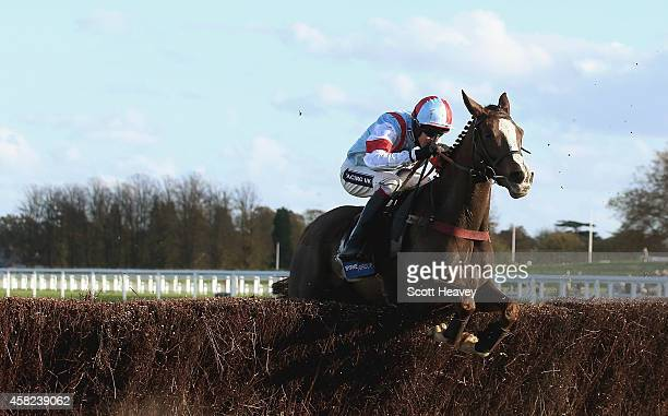 Stone Light ridden by Aidan Coleman during the Byrne Group Handicap Steeple Chase at Ascot Racecourse on November 1 2014 in Ascot England