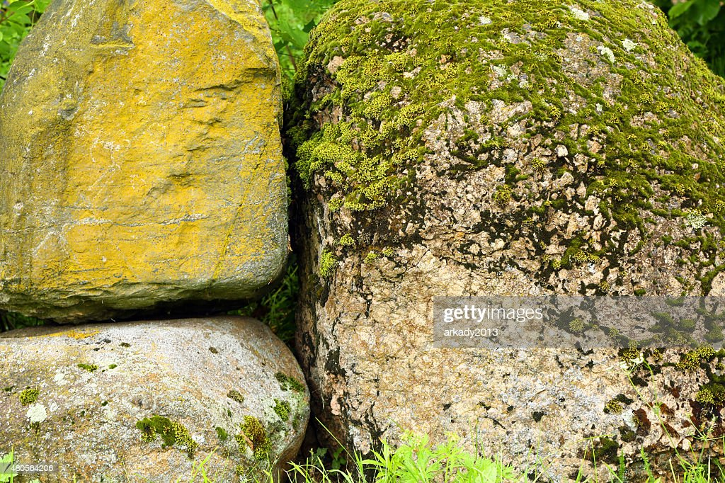 stone, moss : Stock Photo