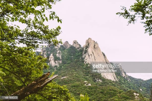 stone mountain - arthur foto e immagini stock