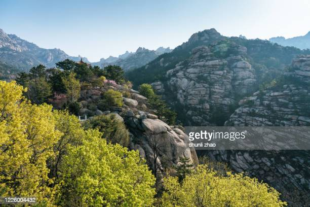 stone mountain - 岩壁 ストックフォトと画像