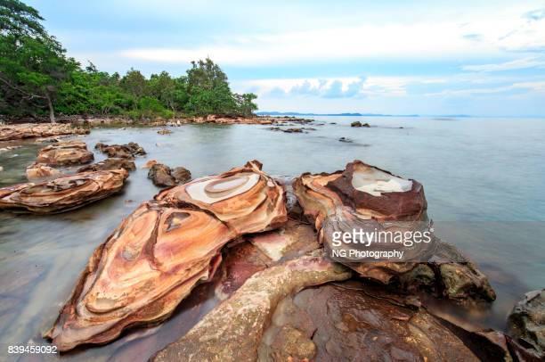 Stone on seashore