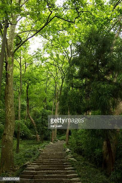 Stone Path in Jade Emperor Hill,Hangzhou,Zhejiang,China