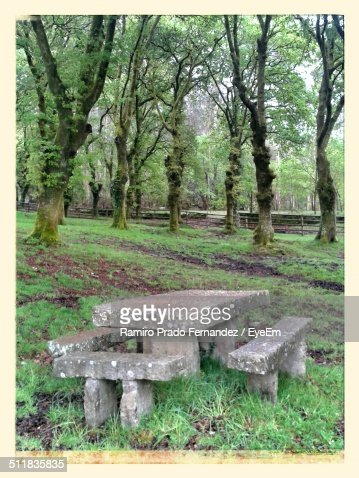 A Stone Picnic Table In A Park Stock Photo Getty Images - Stone picnic table