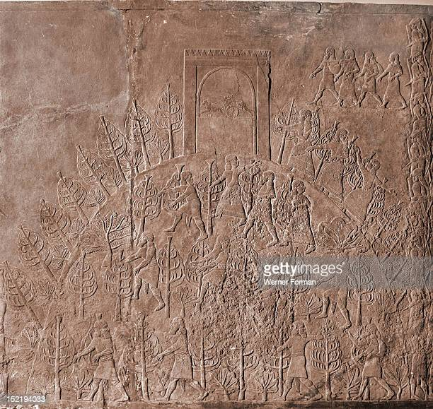 Stone relief from the palace of Ashurbanipal, Spectators at a lion hunt climb a wooded hill surmounted by a stele. This scene has been regarded by...