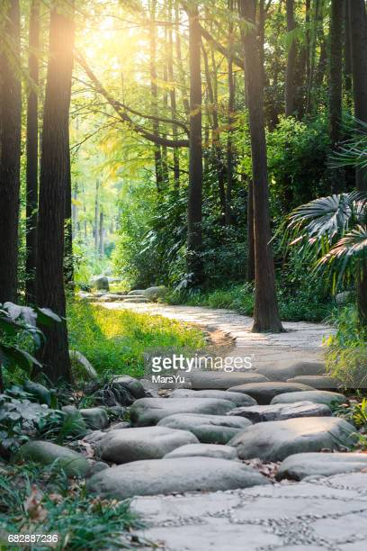 Stone road in magic forest leads to haze of light