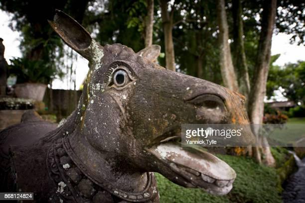Stone sculpture at Tirta Gangga Water Palace