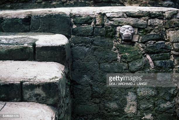Stone skull in the wall of the pyramid known as La Iglesia Coba Group or Group B Coba Quintana Roo Mexico Mayan civilisation 6th10th century