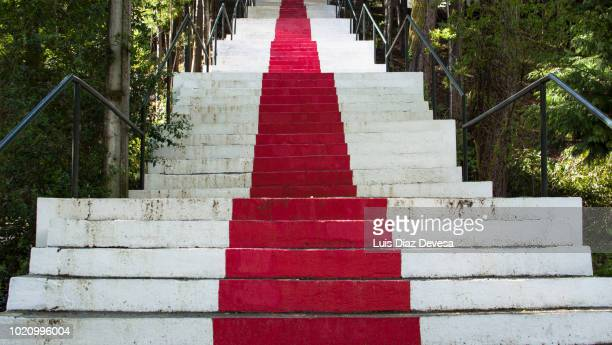 Stone stairs with red stripe in the middle