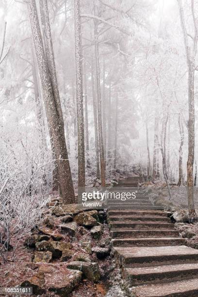 Stone steps in Mt Huangshan at winter