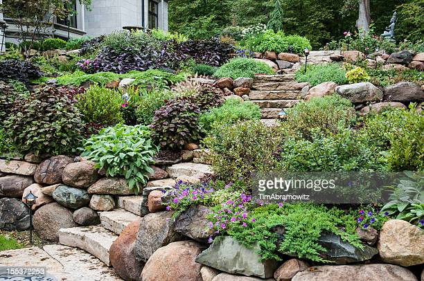 stone steps in the garden - retaining wall stock pictures, royalty-free photos & images