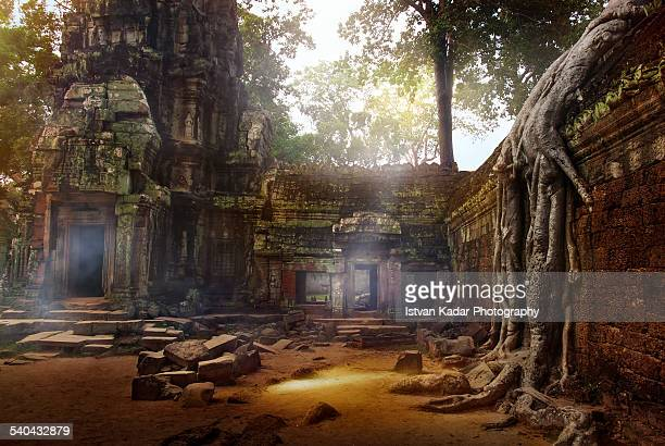 stone structures and corridors at ta prohm. - angkor stock photos and pictures