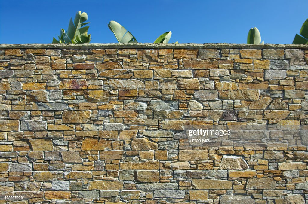 Stone surrounding wall with palm leaves and clear sky : Stock Photo