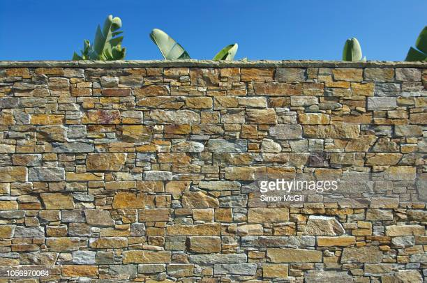 stone surrounding wall with palm leaves and clear sky - stone wall stock pictures, royalty-free photos & images