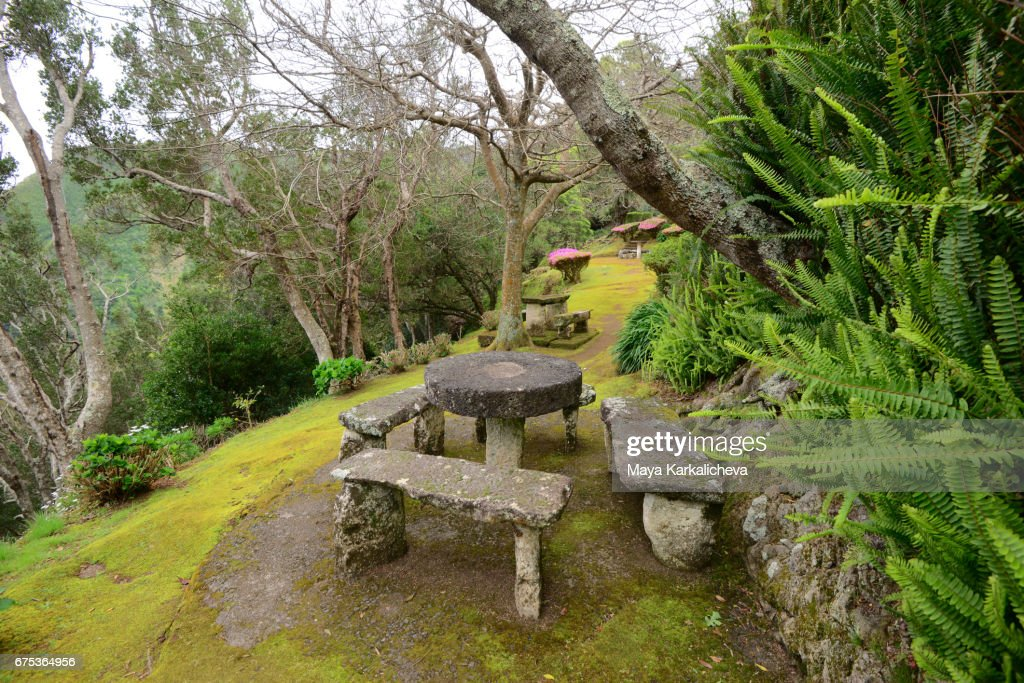 Stone Table At A Picnic Area On Sao Miguel Island Stock Photo - Stone picnic table