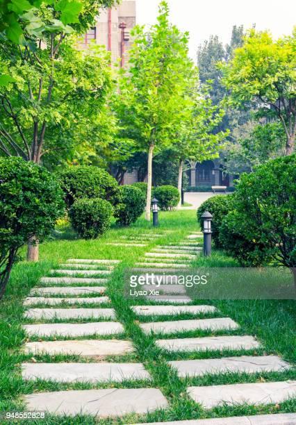 a stone walkway - liyao xie bildbanksfoton och bilder