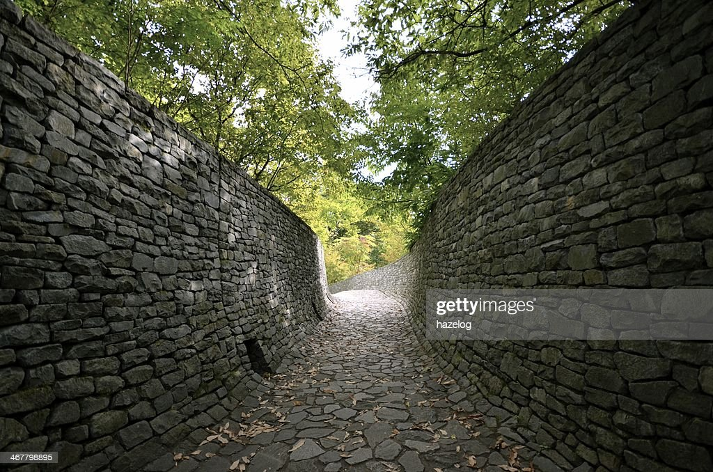 Stone wall and stone path in the forest : Stock Photo