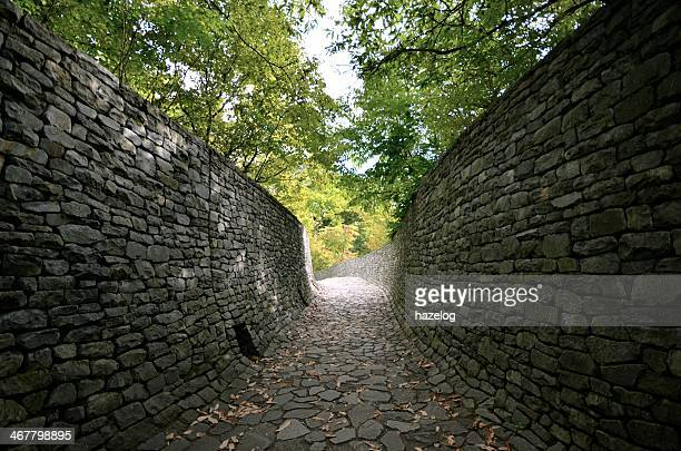 Stone wall and stone path in the forest