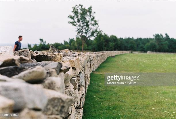 stone wall by grassy field against sky - muro stock photos and pictures