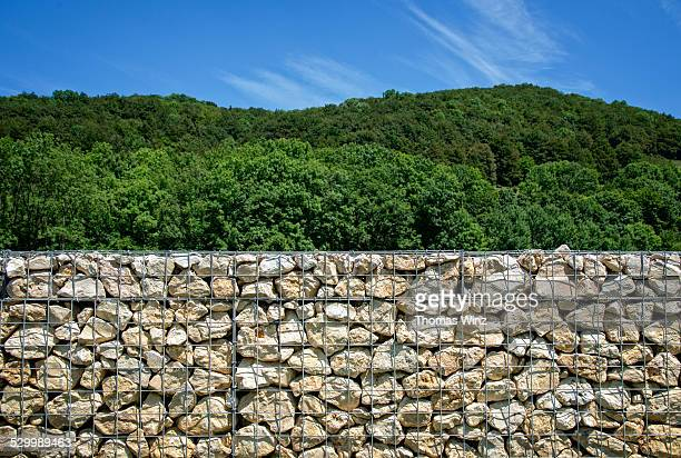 Stone wall in front of a forest