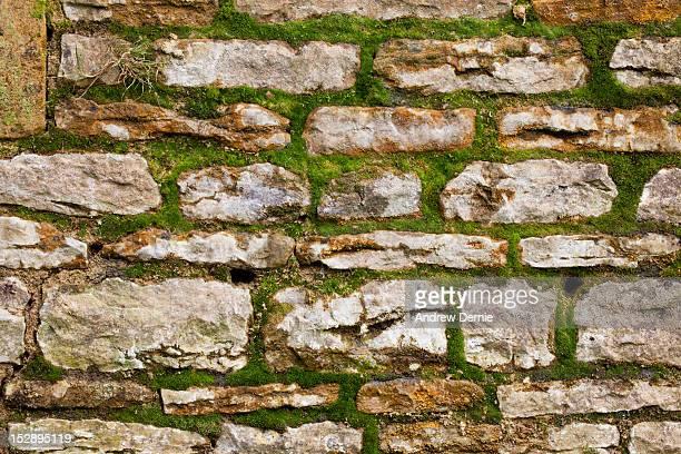 stone wall - andrew dernie stockfoto's en -beelden