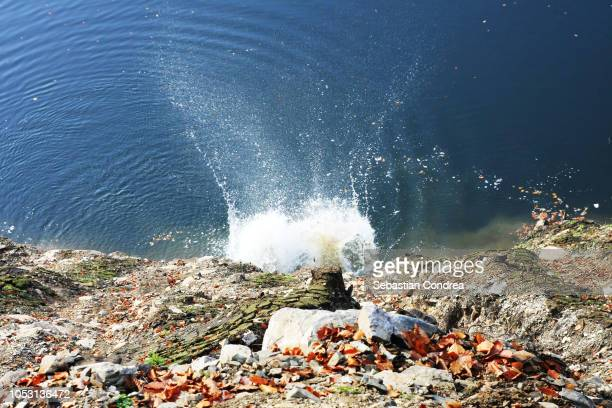 Stones fall into the water making waves,forest,mountain