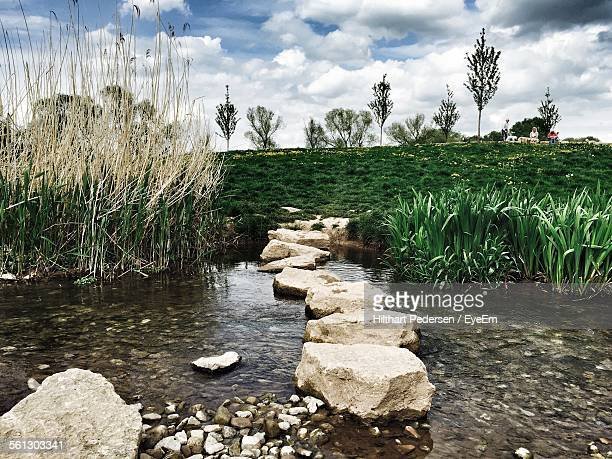 Stones In Stream Against Grassy Field